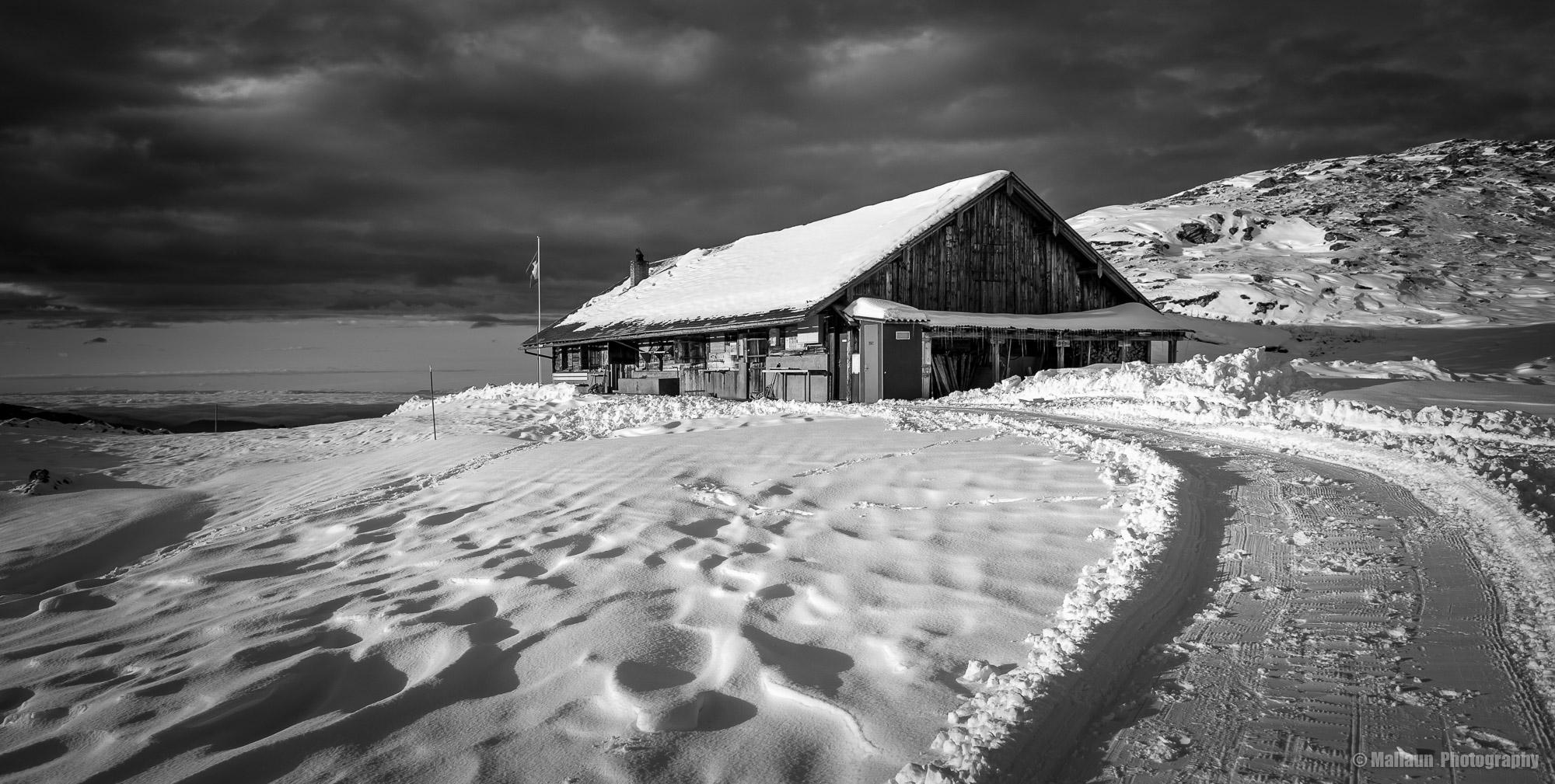 Die Alp Tritt beim Niederbauen © Mallaun Photography