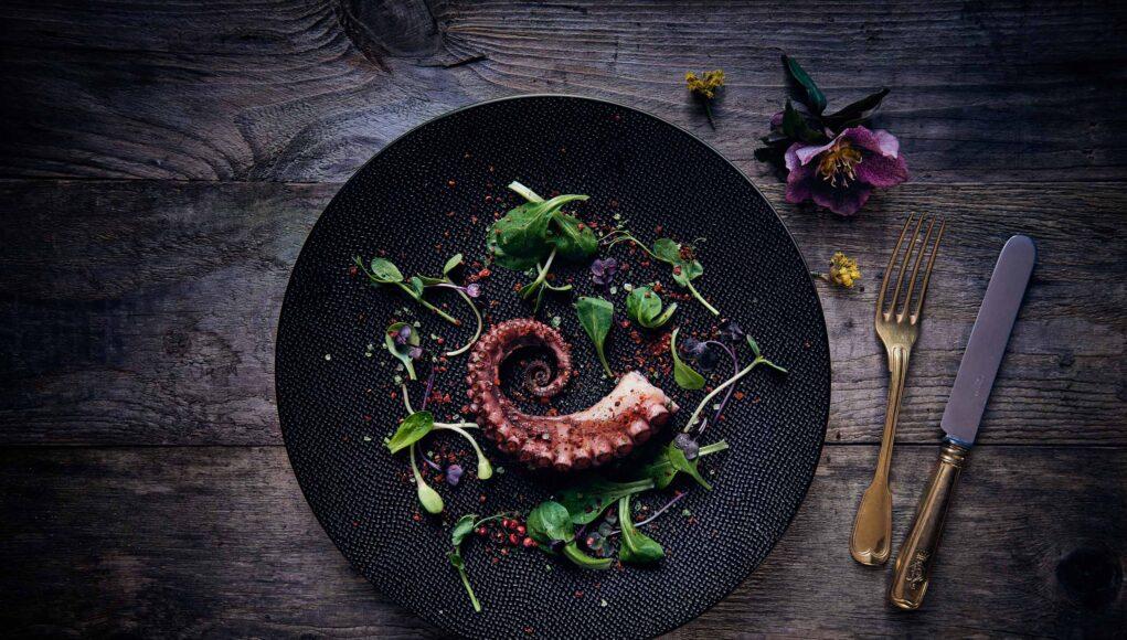 Das schönste Model in der Food-Photography - der Pulpo