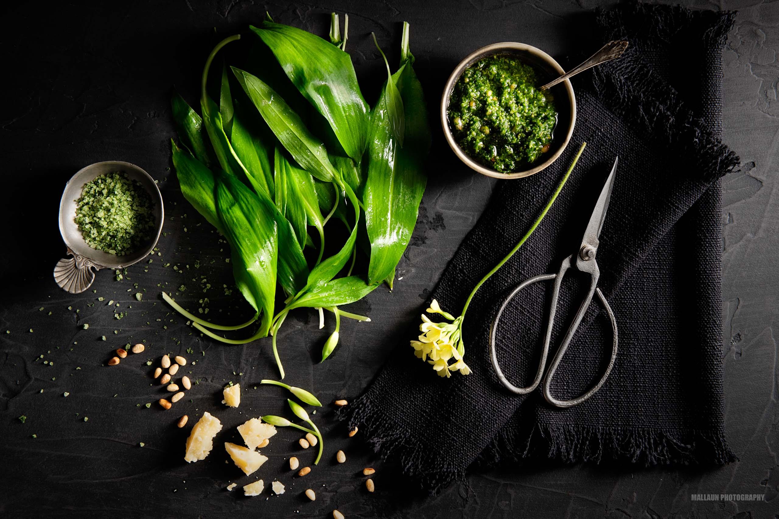 Ernte Bärlauch, Parmesan, Pinienkerne, Olivenöl und Bärlauch-Pesto